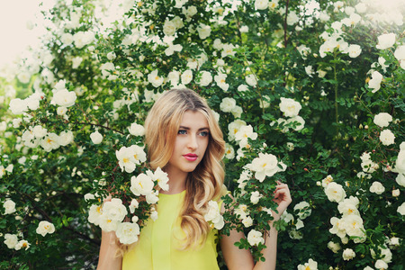 smells: beautiful happy woman with long curly hair smells white roses outdoors, closeup portrait of sensual girl face, blonde female portrait with flowers, elegant lady in blossom garden, vintage toning Stock Photo