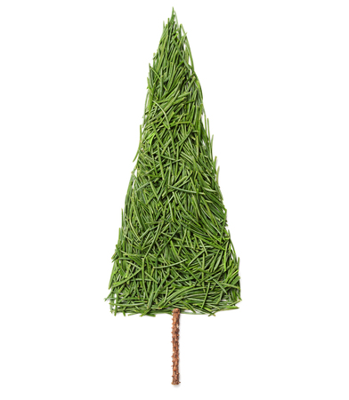 abetos: Silhouette of Christmas fir tree made of pine needles on a white background, top view