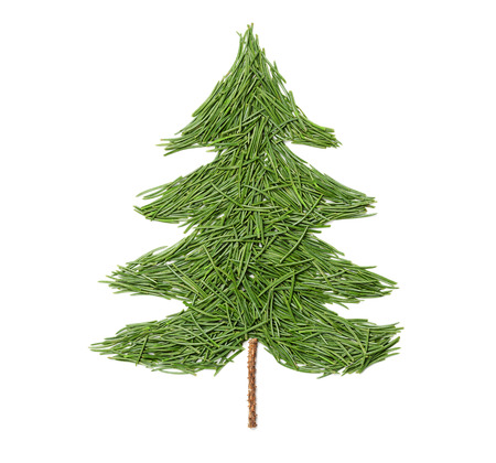 needle: Silhouette of Christmas fir tree made of pine needles on a white background, top view