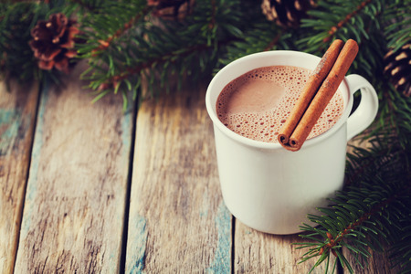 Cup of hot cocoa or hot chocolate on wooden background with fir tree and cinnamon sticks, traditional beverage for winter time, vintage toning