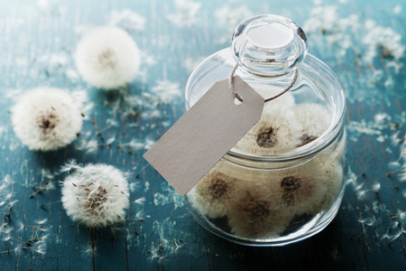 blowball: Blowball or dandelion in wishing jar with paper tag, rustic teal background, make a wish concept, unusual gift or present Stock Photo