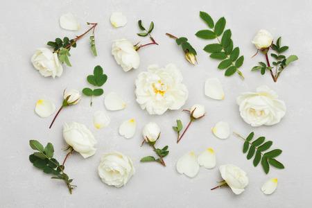 Weiße Rosenblüten und grüne Blätter auf hellgrauem Hintergrund von oben, schönes Blumenmuster, Vintage Farbe, flaches Laienstyling Standard-Bild - 59628014