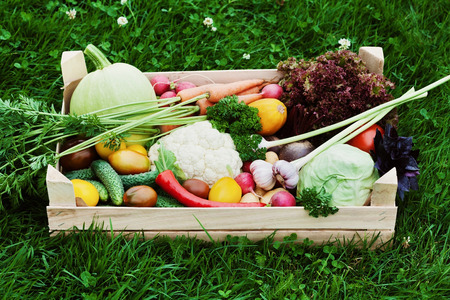 Wooden box with a crop of vegetables and harvest of root on the background of the grass. Fresh and organic food. Standard-Bild