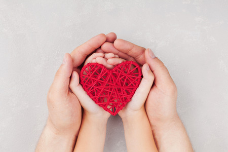 hands holding heart: Adult and child holding red heart in hands top view. Family relationships, health care, pediatric cardiology concept. Stock Photo