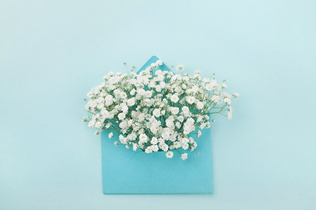 Mockup of gypsophila flowers in envelope on blue background top view in flat lay style.