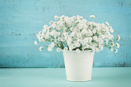 Beautiful gypsophilla flower in white vase on turquoise vintage table.