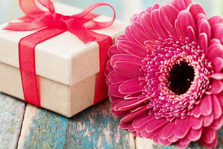 Spring greeting card from single beautiful gerbera daisy flower and gift or present for mother or womans day on vintage wooden background.