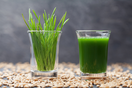 Wheat grass juice. Healthy and organic morning drink. Detox, fitness and superfood trend.