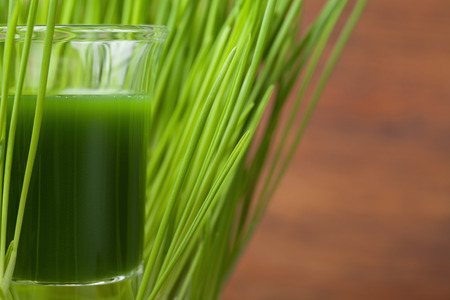 Wheat grass juice. Detox and fitness concept. Superfood. 写真素材