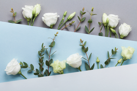 Minimalistic concept of paper card decorated beautiful white flowers and eucalyptus leaves on pastel background top view. Flat lay style.