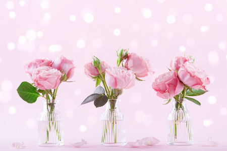 Beautiful rose flowers in vase on pink background. Greeting card for Womens day or Mothers day. Stock Photo