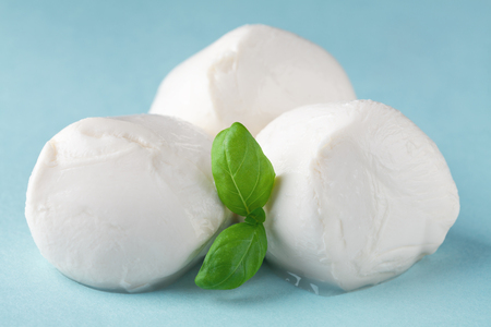 Mozzarella cheese with basil on blue background. Natural italian dairy product.