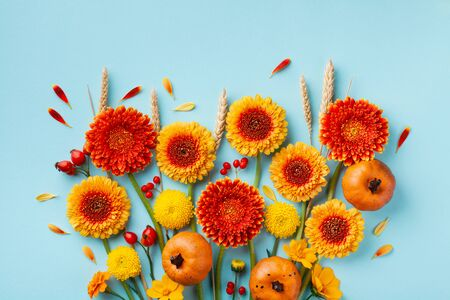 Creative autumn nature composition with orange and yellow gerbera flowers, decorative pumpkins, wheat ears on blue background. Thanksgiving day concept. Flat lay. Imagens - 129957748