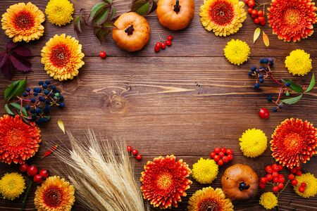 Autumn frame with orange and yellow gerbera flowers, decorative pumpkins, wheat ears. Beautiful nature composition for Happy Thanksgiving day on wooden rustic table top view.