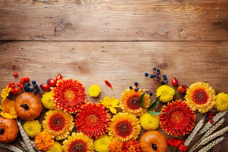 Orange and yellow gerbera flowers, decorative pumpkins, wheat ears on wooden rustic table top view. Autumn nature or Thanksgiving day background.