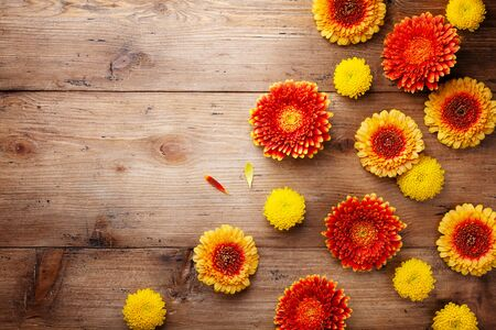 Floral nature composition of beautiful yellow and orange gerbera flowers on wooden rustic table top view. Autumn concept. Greeting card.