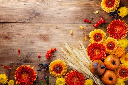 Autumn nature composition with orange and yellow gerbera flowers, decorative pumpkins, wheat ears on table top view. Thanksgiving day background.