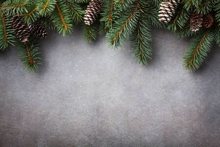 Christmas background. Green fir tree branches with cones top view.