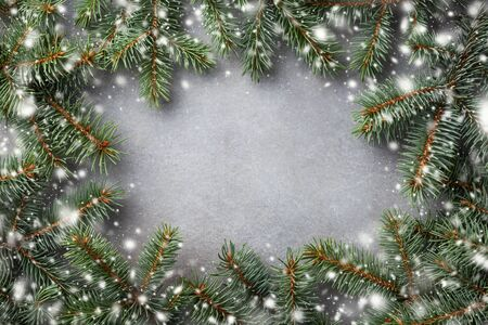 Christmas winter background. Fir tree branches top view. Snow effect.