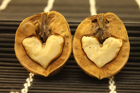 Two nuts with hearts for Valentine