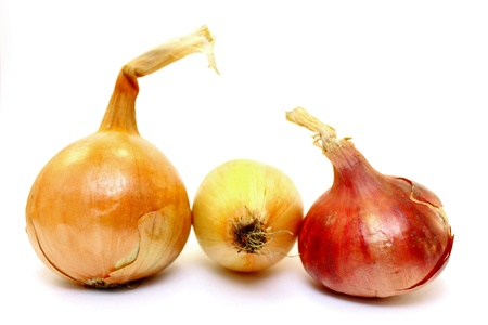 Beautiful onion on a white background photo