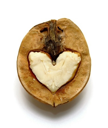 Two nuts with abstract hearts photo