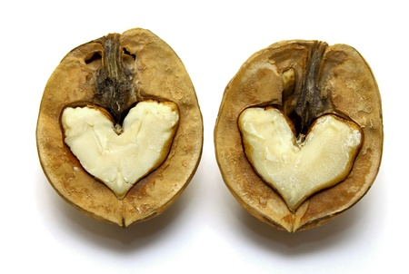 Beautiful nut with abstract heart photo