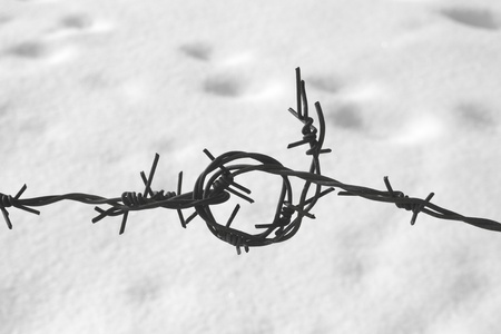 concentration camp: Barbed wire Stock Photo