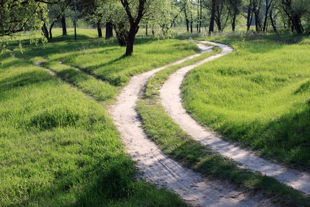 winding road: Beautiful forest road in the morning