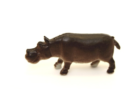 Toy hippo on a white background photo