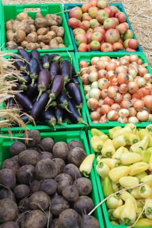 Harvest of vegetables and fruits photo