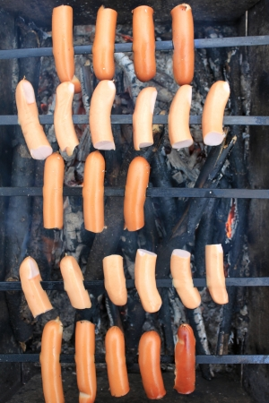 Appetizing grilled sausages on skewers photo