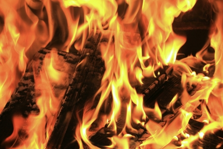 fireside: Burning fire close-up, fireplace