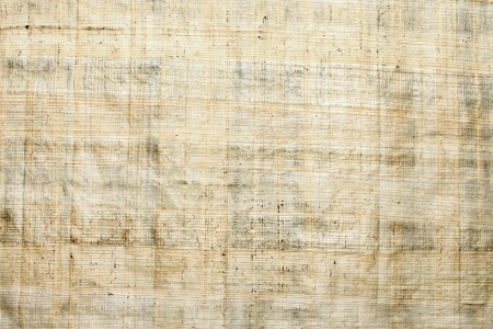 Papyrus paper texture Stock Photo