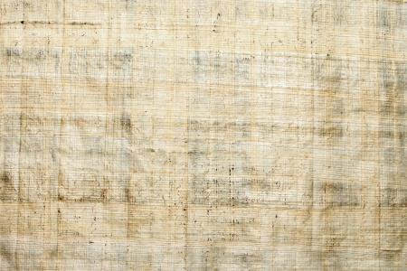 Papyrus paper texture Standard-Bild