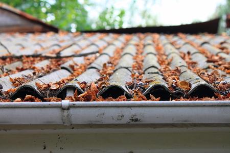 mantenimiento: Un mont�n de hojas de oto�o en un tejado Foto de archivo