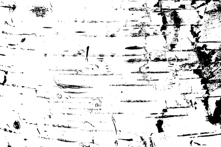 Modern black and white abstract background: Pattern of birch bark with black birch stripes and with wooden birch texture as black and white birch background Stock Photo