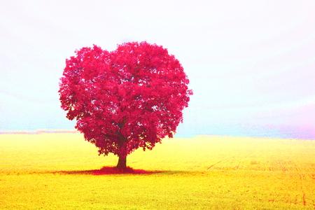 Valentine's day, wedding or holy valentine's day