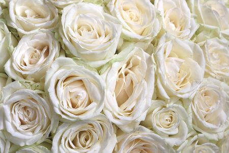 Natuurlijke bloemenachtergrond met boeket van witte rozen