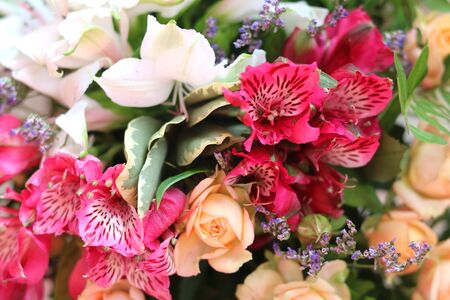 Beautiful bright background of different flowers in bouquet Stock Photo