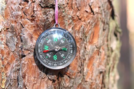 Classic compass on background of tree bark close-up