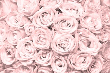 Natural floral background with bouquet of pink roses