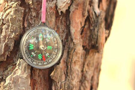Classic compass on background of tree bark close-up 版權商用圖片