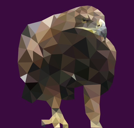 Realistic background Triangle polygonal eagle. Vector illustration
