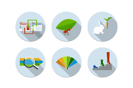 Flat design vector illustration six icons set of website SEO optimization, programming process and web analytics elements  Isolated ant, rabbit, magnifier, color spectrum Vector