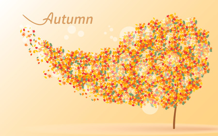 rips: Autumnal background. Wind rips the yellow leaves from the tree