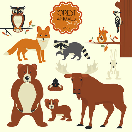 racoon: Forest animals collection of bear, elk, hare, fox, racoon, squirrel, owl and woodpecker