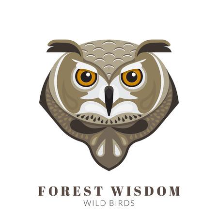 vision nocturna: Dise�o Gr�fico de la cabeza b�ho sabio. Texto esbozado Vectores