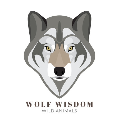 black and white wolf: Graphic design of cute grey wolf head. Text outlined Illustration