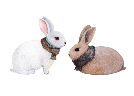 Two rabbits with knitted warm scarfs hand painted in watercolor. Autumn-winter season. Isolated on white.